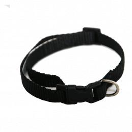 Collier Chien UNI Noir 1 cm