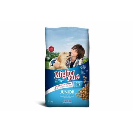 MIGLIOR CANE Junior Poulet 1.5kg