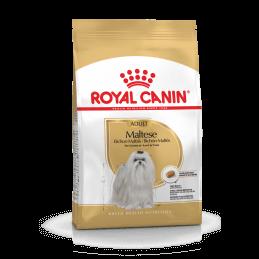 Royal Canin CHIEN Bichon...