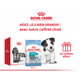 Pack Royal canin CHIEN Mini...