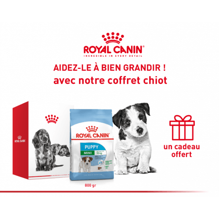 Pack Royal canin CHIEN Mini Puppy 800 gr