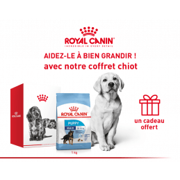 Pack Royal canin CHIEN Maxi...