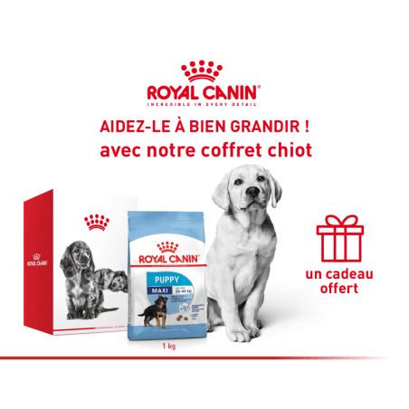 Pack Royal canin CHIEN Maxi Puppy 1 Kg