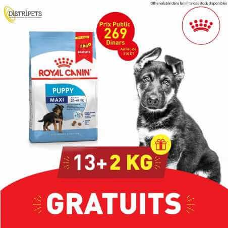 Promo Royal canin CHIEN Maxi Puppy 13 Kg + 2 Kg Gratuit