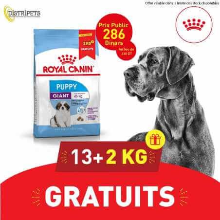 Promo Royal canin CHIEN Giant Puppy 13 Kg + 2 KG Gratuit