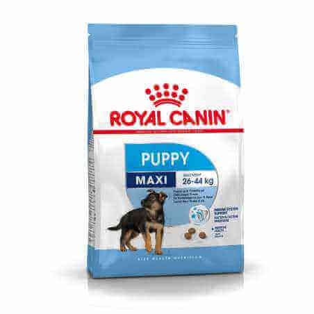 Royal canin CHIEN Maxi Puppy 4 Kg