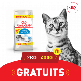 Promo Royal canin CHAT...
