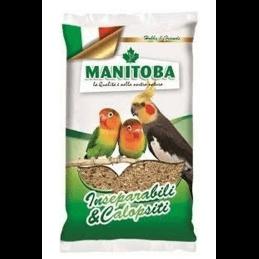 Manitoba Inséparables &...