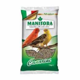 Manitoba Canari 1 KG