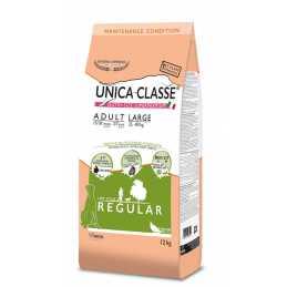 Unica Classe Adult Large...