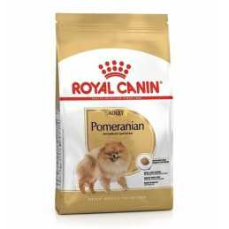 Royal Canin CHIEN Spitz...
