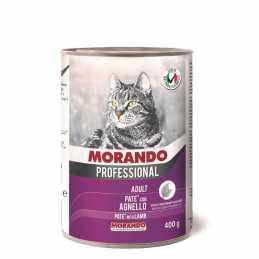 Miglior gatto Professional...