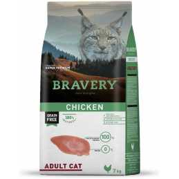 BRAVERY Chat Adulte...