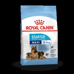 Royal canin CHIEN Maxi...