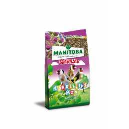 Manitoba chardonneret MIX...