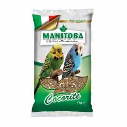 Manitoba cocorite Perruches...