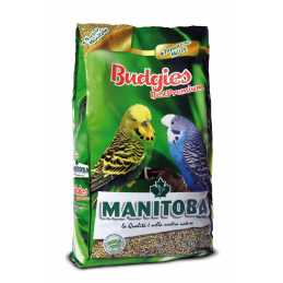 Manitoba Perruches Best...