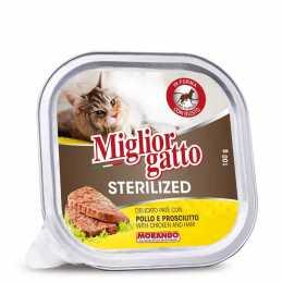 Miglior gatto Stérilisé...