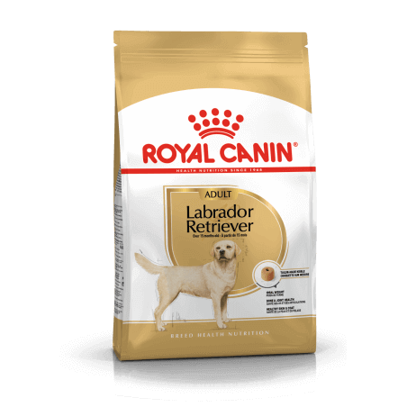 Royal Canin CHIEN Labrador Adult 12 kg