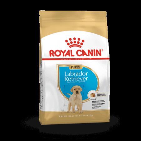 Royal Canin CHIEN Labrador Junior 12 kg