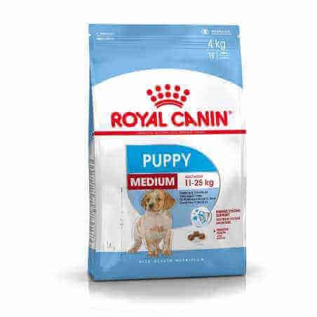 Royal canin CHIEN Medium Puppy 4 Kg